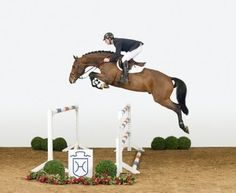 amazing.. This horse is able to look like this over the jump because the rider's position puts him out of the horse's way.