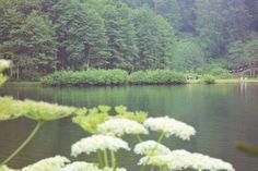 Bir tutam huzur fotoğrafladım ...  #seyahat #Artvin #borçka #karagöl #holiday #Turkey #nature