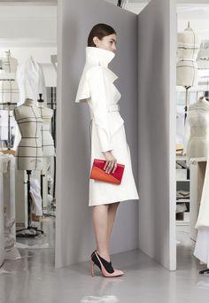 Christian Dior Pré-collection automne-hiver 2013-2014|1