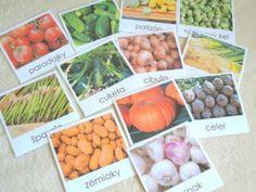 Moje Montessori Karty warzywa