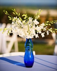 Beach centerpieces made with tall cobalt blue vases filled with white orchids Orchid Centerpieces, Simple Wedding Centerpieces, Beach Wedding Centerpieces, White Centerpiece, Wedding Flower Arrangements, Table Arrangements, Centerpiece Flowers, Wedding Decorations, Centerpiece Ideas