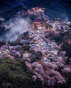 Yoshino, Nara, Japan via Nara, Beautiful World, Beautiful Places, Beautiful Pictures, Kyoto Japan, Tokyo Japan, Monte Fuji, Japan Landscape, Visit Japan