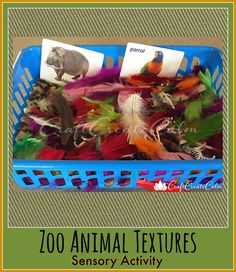 Letter Z activity, sensory play, learn about zoo animals.