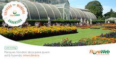 Separamos 3 parques estonteantes pelo mundo, cobertos de flores, história e atividades para lazer, que todo mundo que está fazendo intercâmbio precisa visitar. Veja:http://bit.ly/1PA5WM3