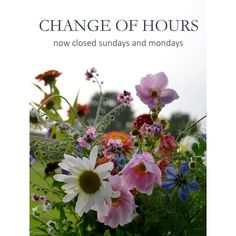Now the café has closed for the season we'll be shut on Sundays as well as Mondays. Open as usual Tuesday to Saturday 10-4.  I'm not sure how long the flowers will go on for. I'm hoping we can keep going until the end of October but it's all feeling so so autumnal. Sometimes I think we fight nature a bit too much. Isn't that the very opposite of what we're trying to do? When it's time to succumb I'll let you know.  #endofseason #autumn #stylingtheseasons #openinghours #finallyigetaweekend