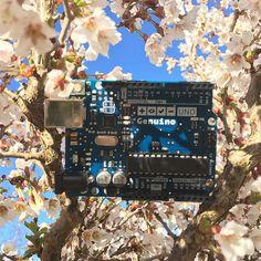 Möt våren med Genuino!  Meet the spring with Genuino!#arduino #genuino #lawicel #arduinocc #arduinod16 #arduinouno #genuinod16 #genuinouno #vårenärhär #springishere @arduino.cc by lawicel