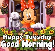 Happy Tuesday, Good Morning good morning tuesday tuesday quotes good morning…