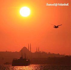伊斯坦布爾的落日之美。 ©mustafa.dutar