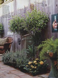 Plants add softness to a stockade fence and they're an inexpensive way to decorate outdoors