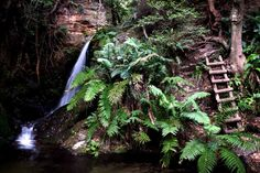 22 waterfalls a perfect getaway from Cape Town. An amazing place perfect for a weekend with friends or family. Beautiful hiking trail through the waterfalls Hiking Trails, Cape Town, Waterfalls, Amazing, Awesome, South Africa, The Good Place, Places, Travel