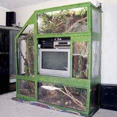 vivarium for reptiles built around a television Reptile Habitat, Reptile Room, Reptile Cage, Reptile Enclosure, Chameleon Enclosure, Lizard Habitat, Turtle Habitat, Vivarium, Paludarium