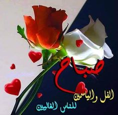 Good Morning Arabic, Christmas Ornaments, Holiday Decor, Cake, Desserts, Quotes, Bonjour, Tailgate Desserts, Quotations