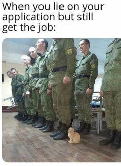 Daily fresh Meme's, Best Funny Meme's, Funniest Memes ever Funny Animal Jokes, Funny Animal Pictures, Cute Funny Animals, Animal Memes, Cute Baby Animals, Funny Cute, Really Funny Memes, Stupid Funny Memes, Funny Laugh