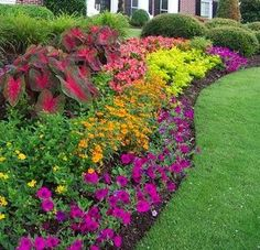 This is a nice shade garden for the North end of the house.