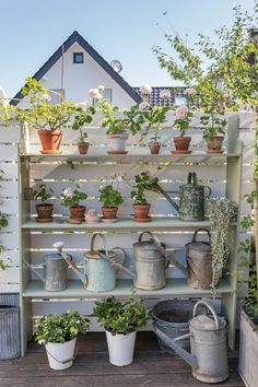 Such a charming display, love this! Picture from Villa, Small Space Gardening, Potted Plants, Garden Tools, Small Spaces, Planter Pots, Canning, Green, Home Decor