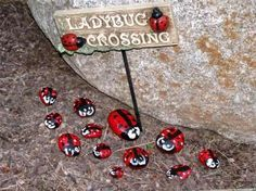 Love the lady bug crossing and the \