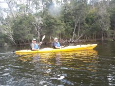 Day 3 optional kayaking along the Ansons River