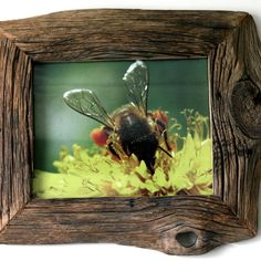 Lovely rustic photo frame!