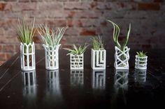 3D Printed Chess & Air Plants par Living Chess - Journal du Design