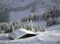 Bavarian Alps Wallpaper Winter Nature