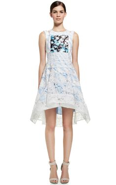 Lace Flag Dress by Peter Pilotto for Preorder on Moda Operandi