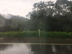 Viajes de nostalgia alegrias y lluvia.