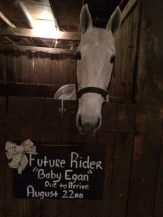 Horse baby announcement #horse #baby #kentucky #ky #sister #aunt #photography #pregnancy