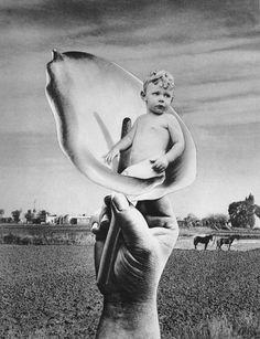 Grete Stern Los sueños 1948-1951 | MALBA