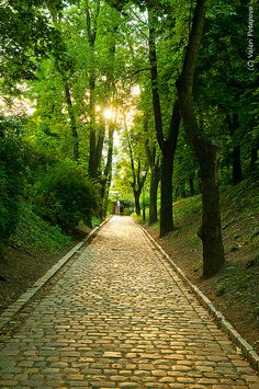 path in park, Vysehrad, Prague, Czech republic, Europe Europe Europe, Central Europe, Beautiful Park, Beautiful Places, Prague Czech Republic, What A Wonderful World, Great Memories, Great View, Forests