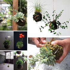 DIY String Gardens for indoor or outside cuteness. #spring #tutorials