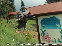 Kinabalu Park, Sabah Kinabalu Park, World Heritage Sites, Gazebo, Outdoor Structures, Kiosk, Pavilion, Cabana