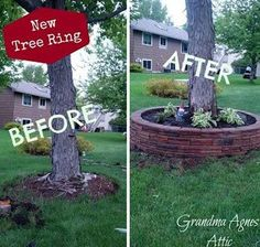 #11. Before and after tree ring.   DIY Ideas For Creating Cool Garden or Yard Brick Projects