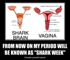 my-period-will-be-known-as-shark-week. Muaytash blog Female Fighters and That Time of the Month