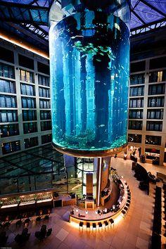 radisson sas berlin an elevator to the hotelrooms THROUGH the aquarium