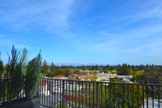 The view from The Epiphany Hotel's eighth-floor hospitality suite.  #travel #paloalto #california