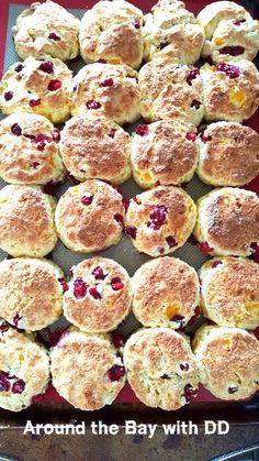 A delicate Berry (partridgeberry,blueberry or cranberry) Tea Biscuit that is very moist and melts in your mouth! Time to stock the freezer with Yummy Treats! The holiday… Orange Scones, Orange Tea, Breakfast Recipes, Dessert Recipes, Desserts, Breakfast Cookies, Dessert Ideas, Appetizer Recipes, Appetizers
