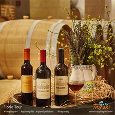 Find out more about the Florio Tour: http://www.easytrapani.com/escursione-winetour.php?id=207 Contact us for booking or for any other customized tour we can exclusively arrange for you easytrapani@easytrapani.com (+39) 3246085443  #giannigrillo #easytrapani #escursioniallagiannigrillo #trapaning #instalike #instagood #bestoftheday #photooftheday #holidayseason #photographyeveryday #instatravelling #igersitalia #communityfirst #instatravel #travel #mytravelgram #instapassport #trapani…