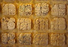 Examples of glyphs used in the Maya writing system. Maya glyphs are placed in columns and are read from left to right in rows of two. From the Archaeoloigcal Museum of Palenque, Mexico.