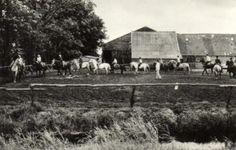 """Gorredijk - Manége """"Dekema"""", Dwersfeart 13 Gorredijk,  Tel. 05133-1343"""