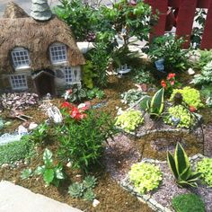 Miniature fairy garden.  I want to make one of these.