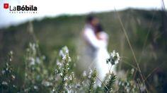 Mari & Edu · A Wedding Day Wedding Day, Flowers, Plants, Pi Day Wedding, Marriage Anniversary, Plant, Royal Icing Flowers, Flower, Florals
