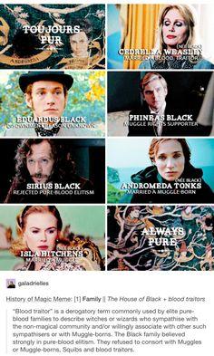 The Noble House of Black, toujurs pur, cedrella black, cedrella weasley, eduardus black, phineas black, Sirius black, andromeda black, andromeda tonks, Isla black, Isla hitchens, Harry Potter, hp