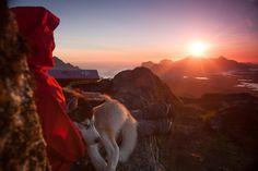 """Spannend! Ein Blogartikel von Heike Kaufhold über den Norwegen-Roadtrip von Nico Walz: """"53 Tage Nudeln – Low Budget Norwegen Urlaub mit Hund"""" - Absolut lesens- und sehenswert!"""