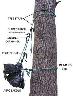 New Tribe Tree Climbing Equipment - tree climbing gear for tree climbing enthusiasts Survival, Tree Climbing Equipment, Tree Felling, Climbing Rope, Rappelling, Tree Care, Camping, Hiking Gear, Tree Arborist