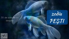 Pisces personality is friendly and selfless, Pisces traits including creativity, sensuality, and imaginative. Read True Facts About Pisces (Pisces Man- Pisces Woman) Pisces Weekly Horoscope, Gemini, Weekly Astrology, Pisces Personality, Tarot Gratis, Zodiac Signs Pisces, Astrology Zodiac, Pisces Quotes, Astrological Sign