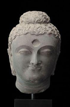 Head of a Buddha  Grey schist Ancient Gandhara, 2nd / 4th century Pakistan or Afghanistan H: 33 cm