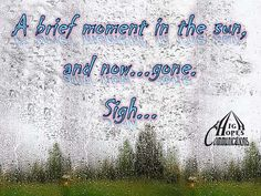 A brief moment in the sun www.highhopescommunications.ca Best Quotes, In This Moment, Sun, Spring, Solar