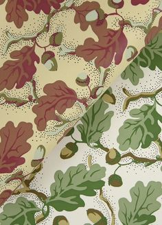 Acorn Wallpaper (#W2014) | DF Companies