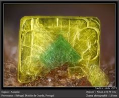 Autunite  (hydrated calcium uranyl phosphate) , Microscopic Image Sabugal, Guarda District, Portugal  Dimensions: fov 1.8 mm  Photo by Ploum. I don't pin many micro shots, but this one is so striking I did.