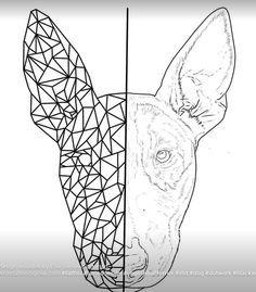 Bildergebnis für bullterrier tattoo